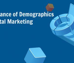 Importance of Demographics in Digital Marketing