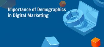 Importance of Demographics in Digital Marketing